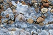 Icy River Bed