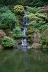 Serenity-Japanese...