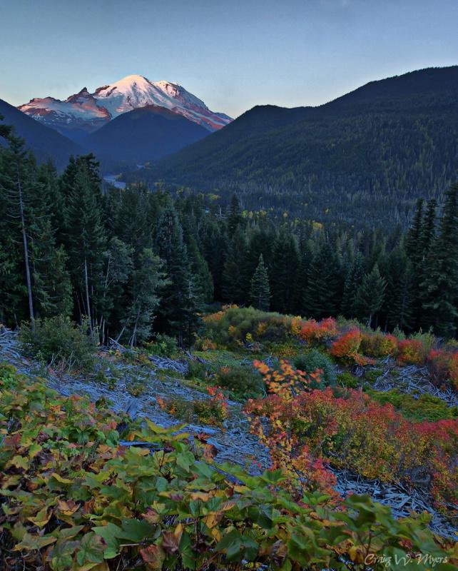 Rainier Sunrise I - ID: 11360283 © Craig W. Myers