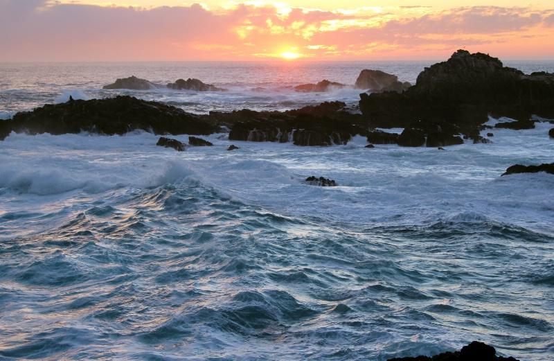 High Surf Advisory   Point Lobos, CA