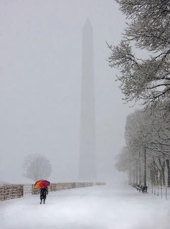 Walker in Washington White
