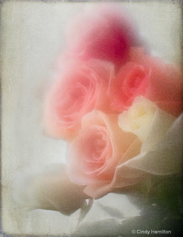 I Need Rose-Colored Glasses
