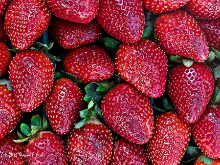 Strawberries Galore