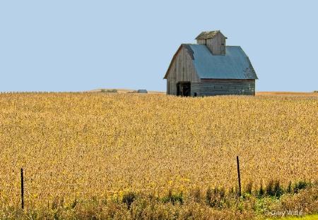 Iowa Land