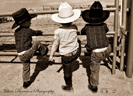 Lil Wranglers