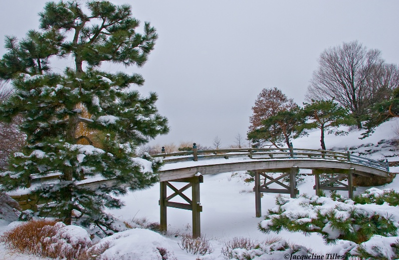Japanese Garden in Winter - ID: 11427385 © Jacqueline A. Tilles