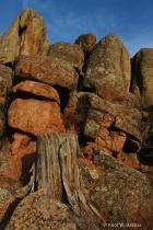 Mountain Medicine #8 (img 2380): Rocks of Vedauwoo