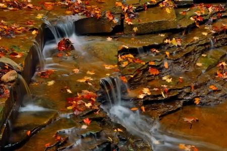 Gentle Flow of Autumn