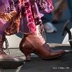 The  Dancing Shoe...