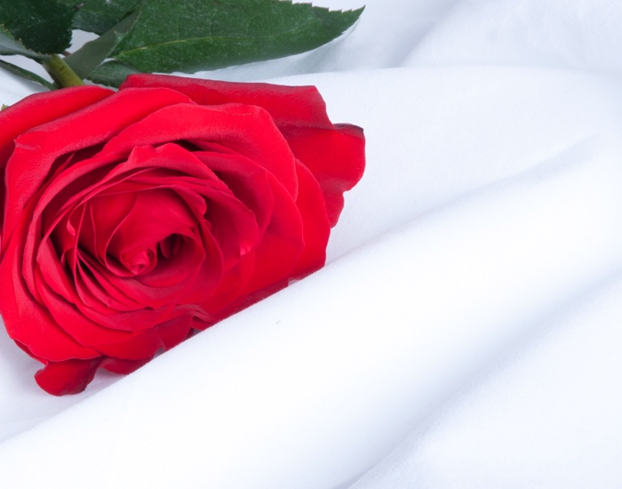 Happy Valentine Babe!