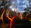 Chihuly storm