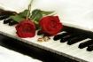Love...music to o...