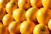 Sun-Kissed Orange...