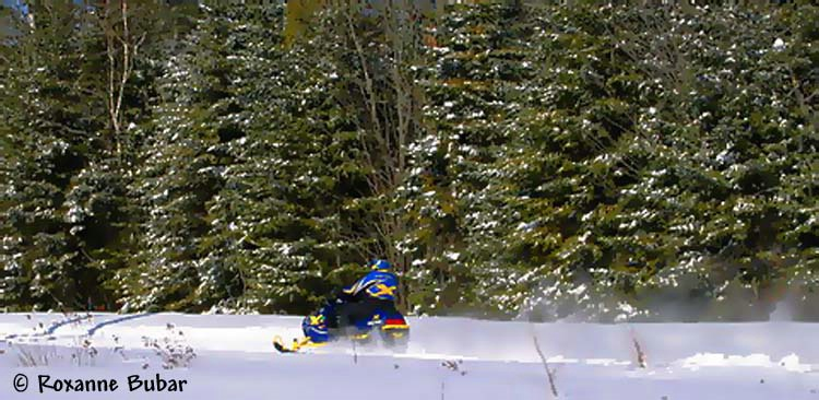Snowmobiling In The County