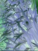 Daylily Inversion