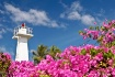 Lighthouse & Boug...