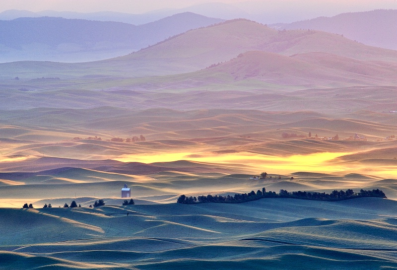 Palouse Dawn - ID: 11495869 © Carolina K. Smith