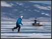 Crossing Winter B...