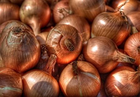 Onions Aglow II