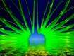 Go Green with Liq...