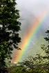 The Rainbow Ends ...