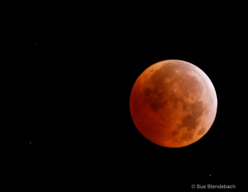 Lunar Eclipse During Winter Solstice, January 2011 - ID: 11535014 © Sue P. Stendebach