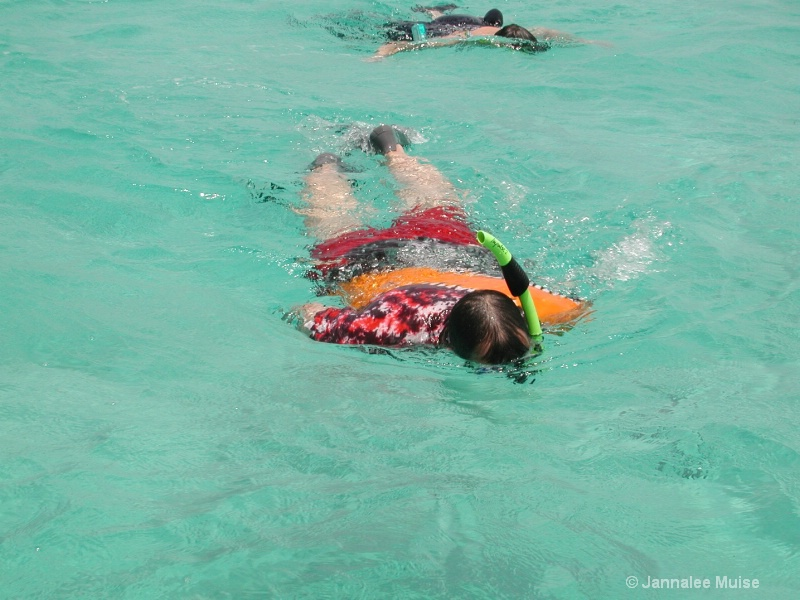 Snorkeling Leo - ID: 11543301 © Jannalee Muise