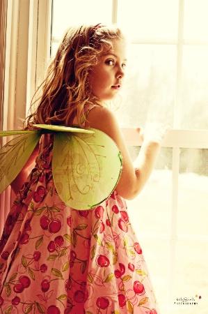 window fairy