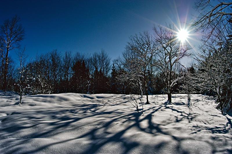 Sun Shadows - ID: 11555234 © Eric Highfield