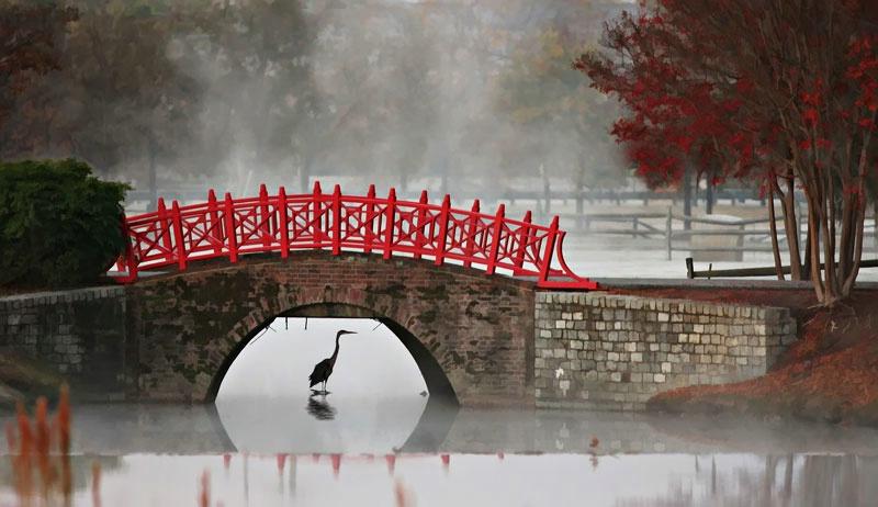Foggy Bridge