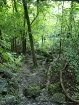 ha ha tonka trail...