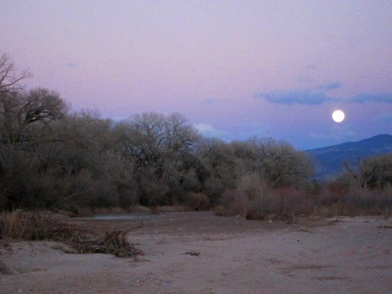 new mexico moon