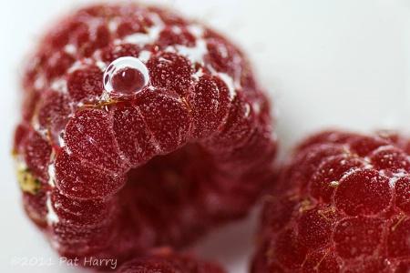 Blowing Raspberries