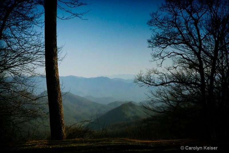 Spring Morning in the Smokies - ID: 11573689 © Carolyn Keiser