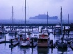 Fisherman's W...