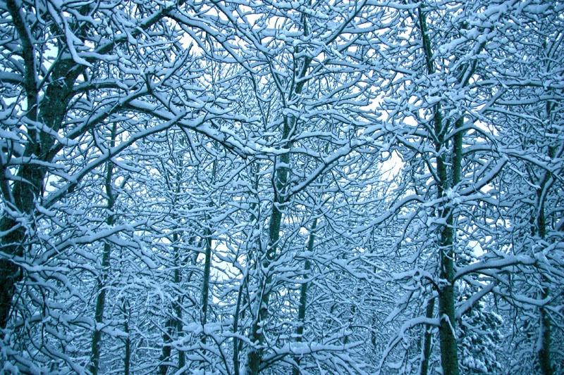 WinterAbstraction