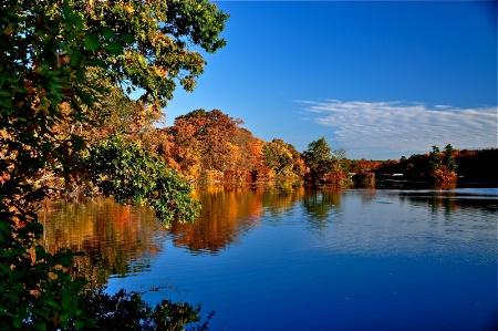Long Island Fall