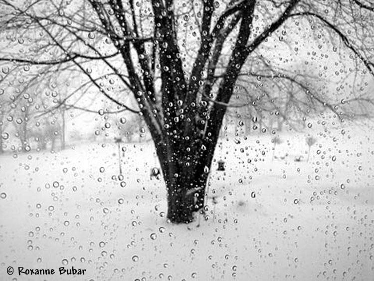 April Showers Bring.........