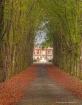 driveway in autum...