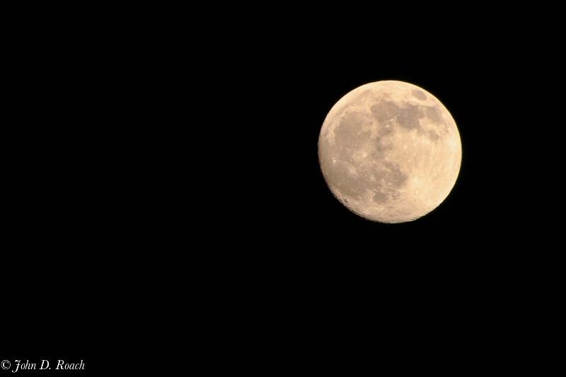 Algonquin Moon - ID: 11660409 © John D. Roach