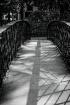 Savannah Bridge