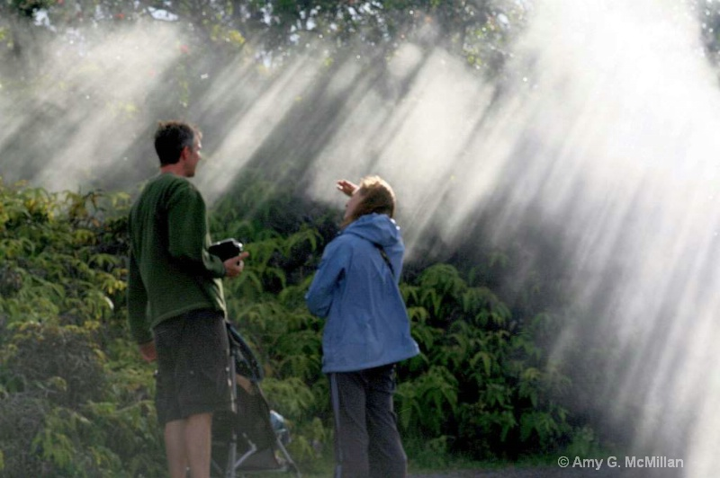 Raining Sunbeams - ID: 11682690 © Amy G. McMillan