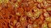 Tomatoes Anyone ?