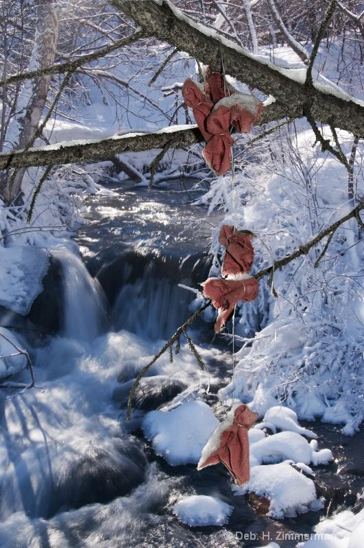 Prayer Bundles along Spearfish Creek - ID: 11685398 © Deborah H. Zimmerman