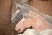 Terra Cotta Horse...