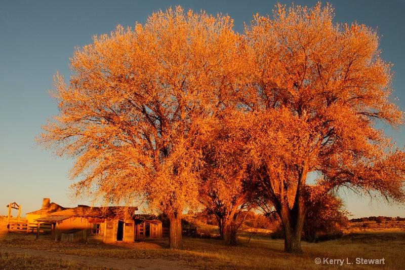 Evening Glow - ID: 11711673 © Kerry L. Stewart