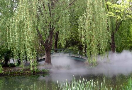 The Monet Bridge