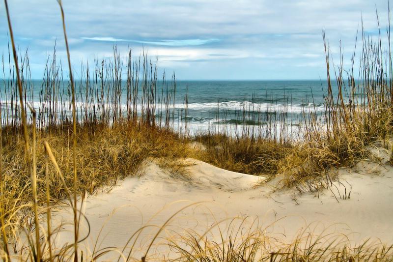 Simply the Beach