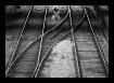 Rails and Shadows