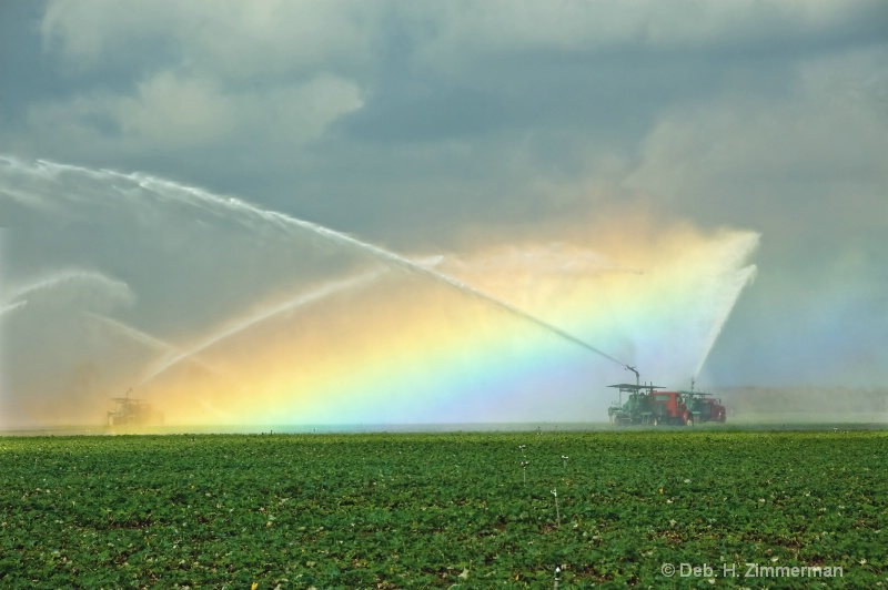 Making Rainbows - ID: 11798073 © Deborah H. Zimmerman